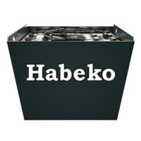 Тяговая аккумуляторная батарея для Habeko TP25 IC 2 PzS 160