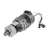 Электродвигатель SCHABMULLER 50077944