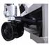 Тележка гидравлическая TISEL T-20 R500 для рулонов фото 4